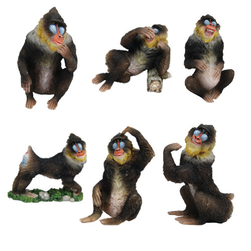 6604 Mandrill (Set of 6)