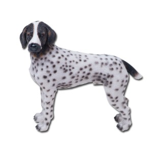 7642 German Shorthair Pointer