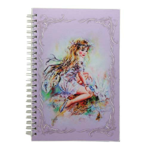 NOW8186 The Crystal Keeper Fairies Small Journal